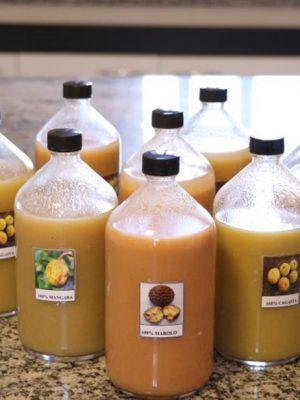 sucos-de-frutas-do-cerrado-sao-desenvolvidos-na-ufla